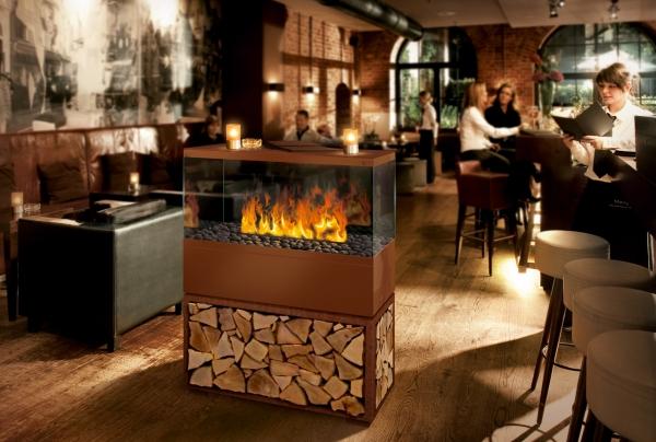ambiente und w rme case effektfeuer elektrofeuer. Black Bedroom Furniture Sets. Home Design Ideas